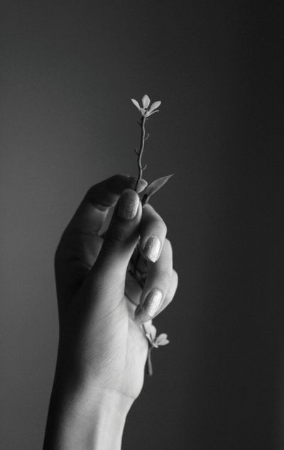 Black And White Hand Monochrome Flower Light And Shadow My Hand  Artsy Canon Shades Of Grey Fine Art Photography Monochrome Photography