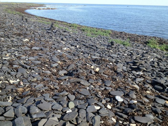 Baltic Sea Sunny Sweden Beach Beauty In Nature Black Stones Day Horizon Over Water Outdoors Pebble Pebble Beach Rock - Object Sea Shore Stones Tranquil Scene Tranquility Öland