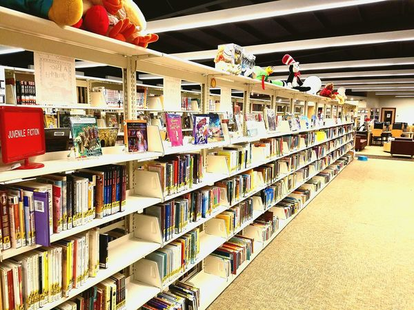 Shelf Library Bookshelf Choice In A Row Toys Books Indoor Indoors  Large Group Of Objects