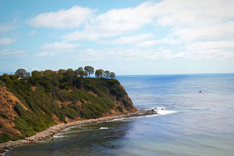 Trees growing on cliff at palos verdes peninsula against sky