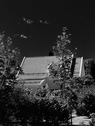 'SURROUNDED BY TREES' Home Trees Trees And Sky Tranquility Home House Residential Building Residential District Built Structure Treescape Bushes B&w Technology Sky TOWNSCAPE Tranquil Scene Calm Building Exterior