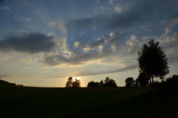 Beauty In Nature Cloud - Sky Germany Majestic Nature Non-urban Scene Outdoors Sauerland Silhouette Sky Sunset Tranquil Scene Tranquility Tree Landscape Atmospheric Mood Sky And Clouds Scenics Evening Evening Sky