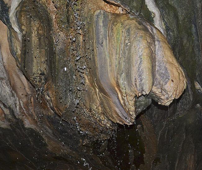 Aigua De Valls Estalactita Estalactitas Full Frame Goteras Guixes Gósol Nature Pont Cabradis