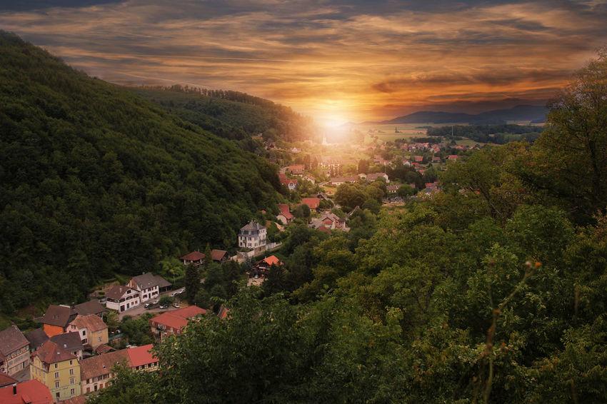 Alsace, France First Eyeem Photo Alsace Elsass Peysage Landscape Landscape_Collection Landscape_photography Landscapes Landscape_lovers Manzara Manzara Fotoğrafçılık Doğa Mountain Green