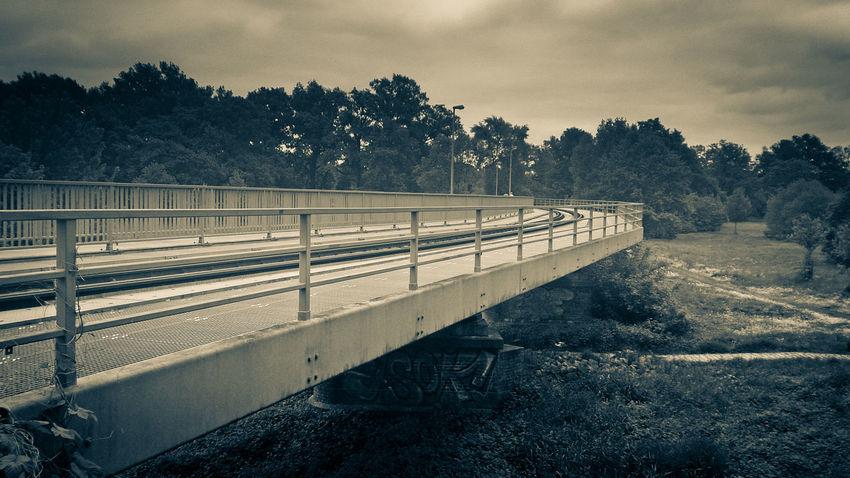 a train bridge is like a brain bridge
