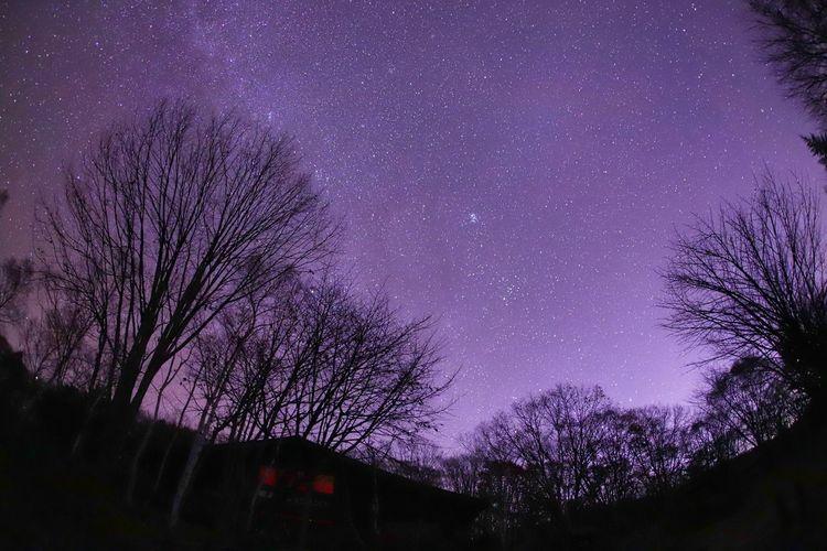 いつも閉店時間😅 銀河鉄道の夜♪ Astronomy Galaxy Tree Milky Way Star - Space Constellation Purple Space Sky