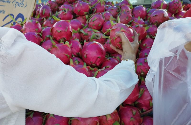 Fruit Market Fresh Fruit Dragon Fruit Pink Color White Color Arm Human Body Part Human Hand City Close-up For Sale Shop Stall Retail Display Farmer Market Market Various Street Market Price Tag Market Stall