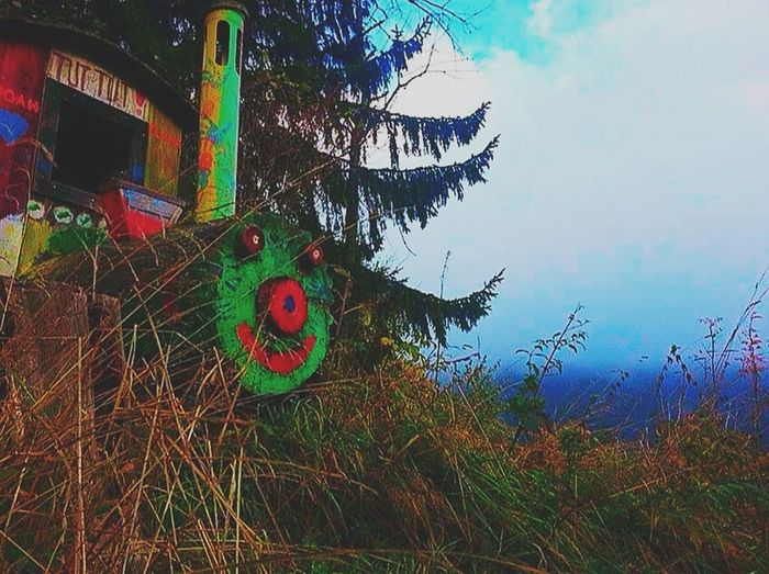 EyeEm Nature Lover Wooden Train Playful Kittenish Woods Vintage #Friendly