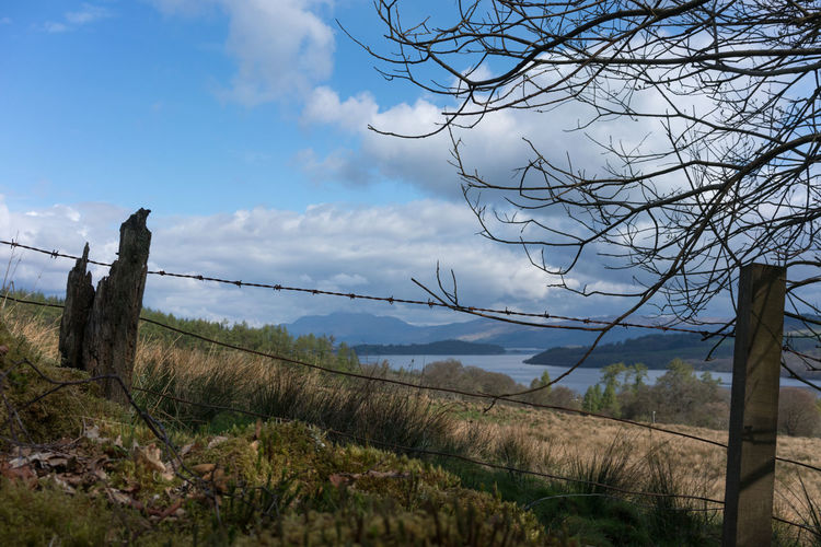An old barb wire fence in the Scottish Highlands Sky Cloud - Sky Plant Barrier Tranquil Scene Tranquility Landscape Boundary Fence Land Environment Nature Beauty In Nature No People Scenics - Nature Tree Non-urban Scene Day Field Wire Outdoors