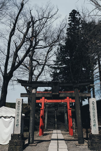 Red One Tree Architecture Plant Built Structure Nature Sky Religion Belief No People Spirituality Place Of Worship Day Bare Tree The Way Forward Outdoors Travel Destinations Direction Footpath Shrine Sakura Sakura Blossom Sakura Trees