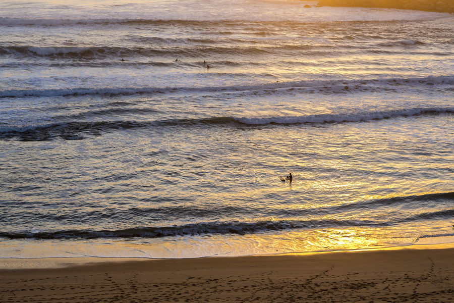 Adventure Atlantic Beach Beauty In Nature Day Ericeira Nature Outdoors Portugal Real People Reflections Sand Scenics Sea Shore Silhouettes Sun Surfs Travel, Vacations Water Wave Waves
