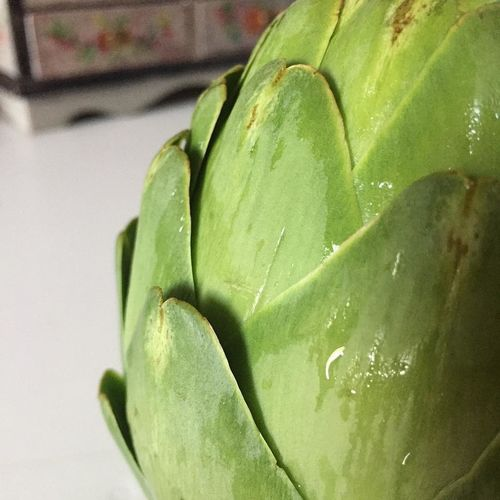 Green Color Artichoke Close-up Focus On Foreground Food Food And Drink Fresh Artichokes Freshness Fruit Green Green Color Group Of Objects Healthy Eating Indoors  Leaf Nature No People Plant Part Raw Food Ripe Still Life Succulent Plant Vegetable Wellbeing First Eyeem Photo