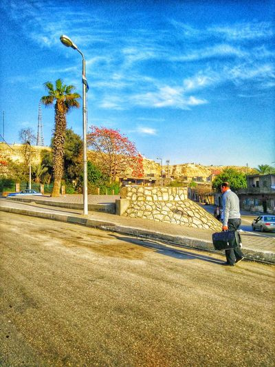 EyeEm Gallery EyeEm 2016 Eyeemphotography EyeEm Team EyeEm Best Shots EyeEm Cairo Egypt Blue Sky Natural Weather EyeEm Best Shots - Nature Eye Em Nature Lover Egyptian Lover I Love This Picture  Photography In Motion Landscapes With WhiteWall OPPO Oppo Photographer On The Road Street Portrait Hdr Edit Street Photography Tree And Sky Cheese! Hello World