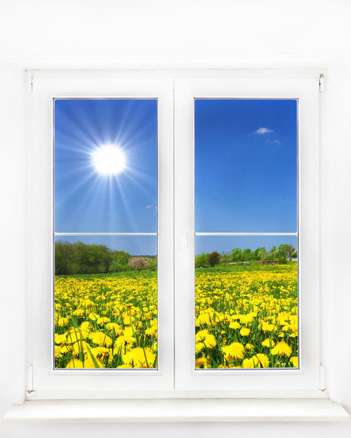 Window to the springtim Bavaria Happiness Happy Hope Tranquility Travel View Abstract Blue Dandelion Envrionment Flower Germany Growth Health Meadow Nature Psychology Relaxation Rest Seasonal Spring Springtime Sunlight Window