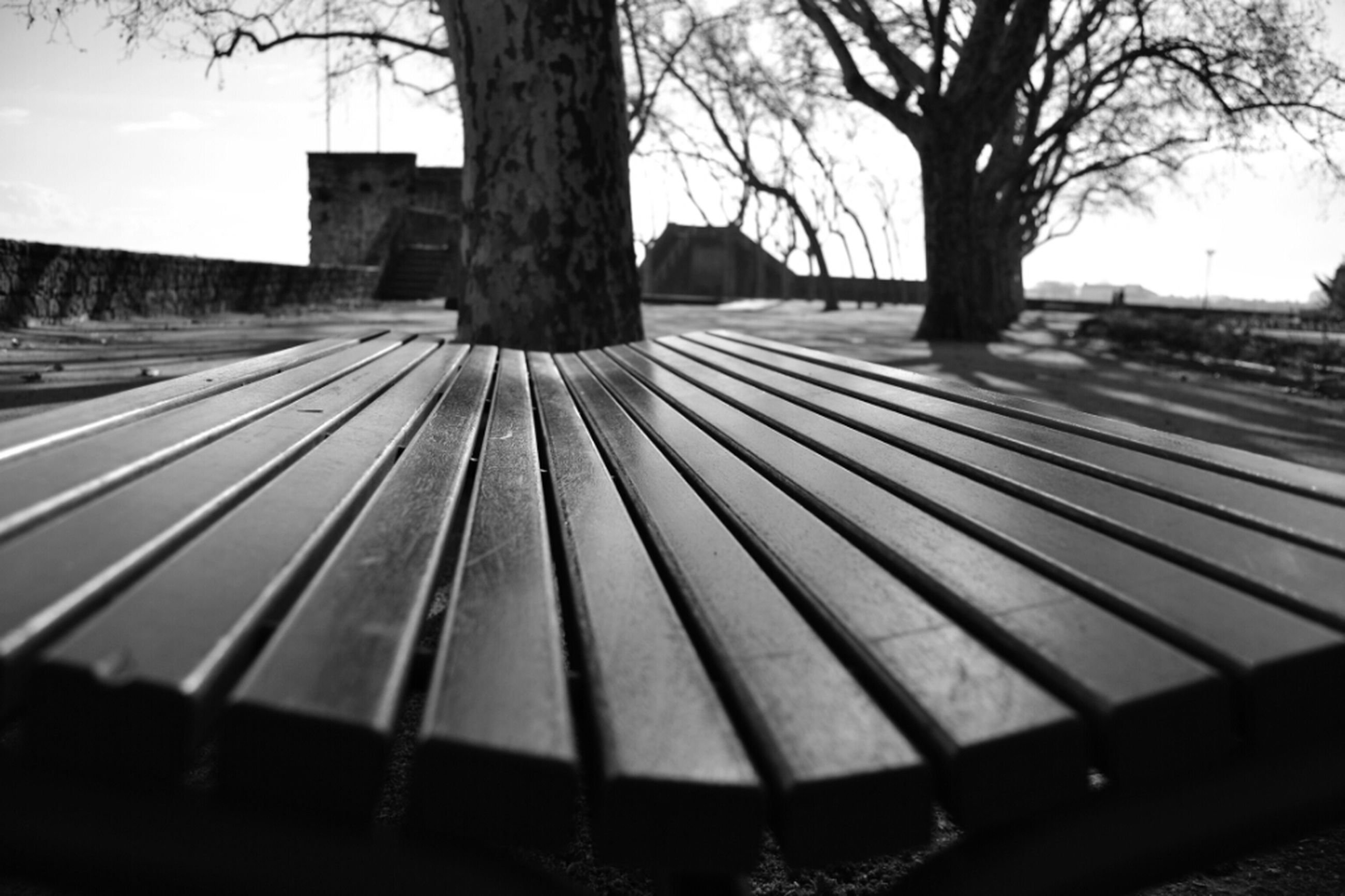tree, railing, sky, bare tree, shadow, transportation, the way forward, bench, sunlight, fence, silhouette, wood - material, outdoors, empty, day, built structure, focus on foreground, no people, surface level, selective focus