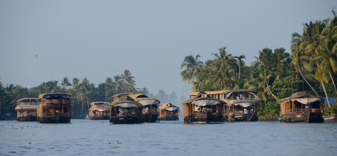 Flock Nikon D7000 Premium Premium Collection Partner Collection India Kerala Backwaters Canals And Waterways Scenics - Nature Beauty In Nature Palm Tree Water River Boat Houseboat Tropical Climate Tropical Tree