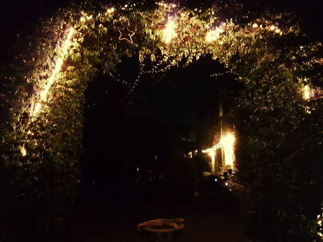 Night Illuminated Outdoors No People