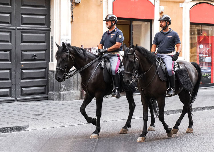 police men with horses in Palermo, Sicily, Italy Domestic Animals Riding Horseback Riding Police Horses Palermo Sicily Street Streetphotography Street Photography Travel Travel Destinations