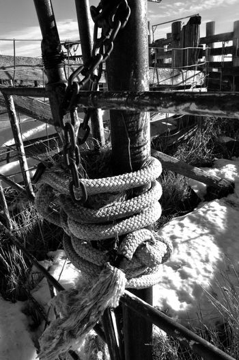 Rope gate latch Outdoor Black And White Close Up Metal Panels Natural Light Portrait Ranch Corral Snow Winter