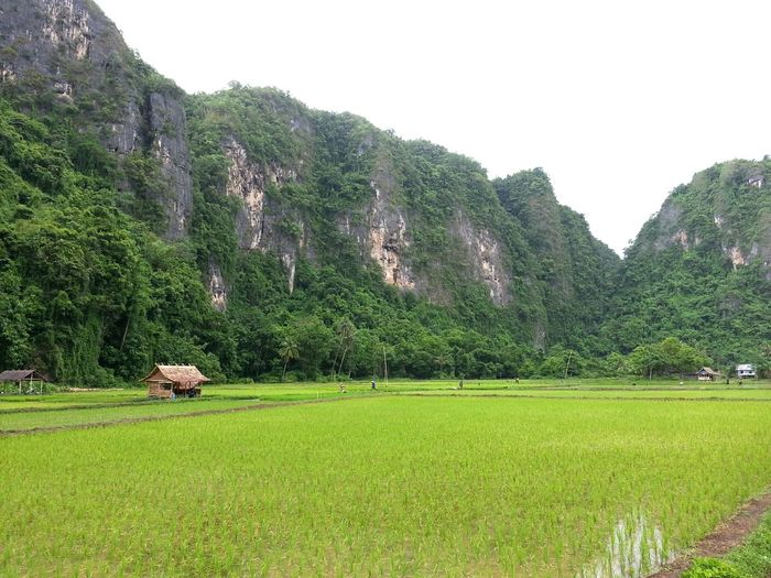 Karst Hill with
