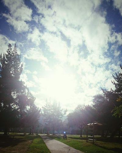 Training Runningshot Sunshine February Retosalud Relaxing Dios guia mi camino