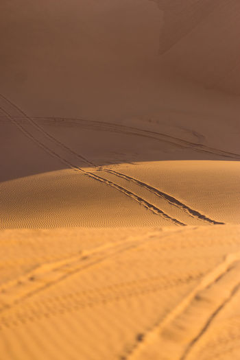Land Sand Desert Sand Dune Landscape Scenics - Nature Arid Climate No People Tranquility Climate Tranquil Scene Environment Nature Sky Beauty In Nature Outdoors Non-urban Scene Day Sunset Tire Track Atmospheric Morocco Morocco Desert Golden Sand Golden Sunset