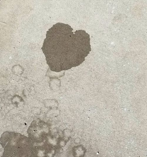 Concrete Jungle Water Stain Concrete Heart Shape Outdoors Outdoor Photography Sidewalk Photograhy Sidewalk Sign SignOfLove Love ♥ Love City Urban Backgrounds Textured  Close-up Heart Shape I Love You The Still Life Photographer - 2018 EyeEm Awards The Street Photographer - 2018 EyeEm Awards Love Is Love