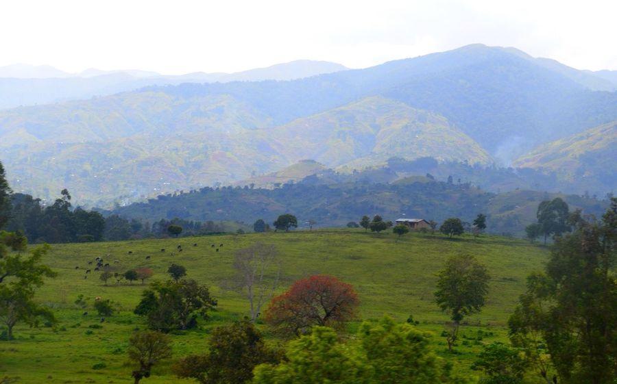 Congo Uganda  Mountains