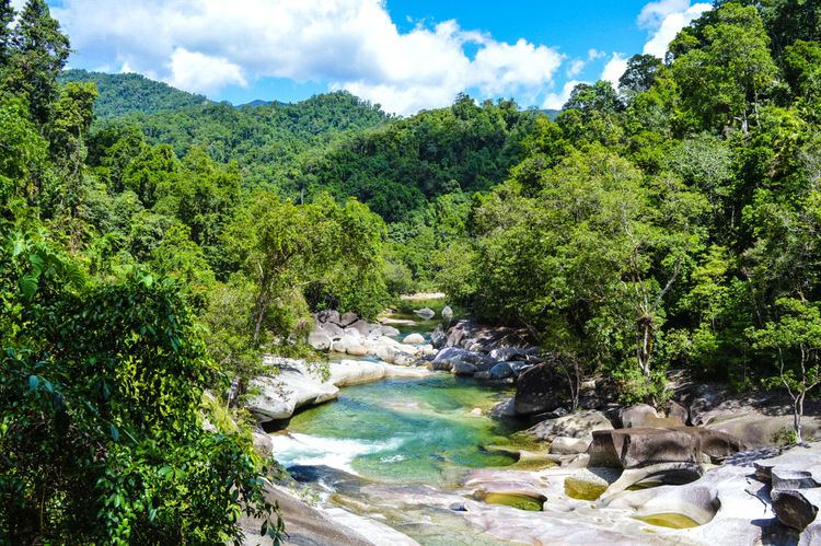 Ausralia Beauty In Nature Environment Environmental Conservation Forest EyeEmNewHere Green Color Landscape Lush - Description Lush Foliage Nature No People Outdoors Rainforest River Scenics Sky Tranquility Travel Destinations Tree Waterfall First Eyeem Photo FirstEyeEmPic Explorers Adventures
