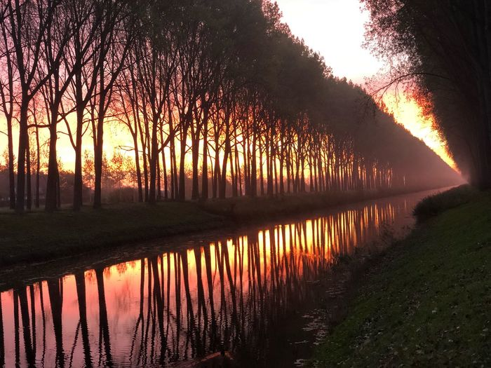 Sunrise over the King Leopold canal near Damme Belgium Damme Belgium Canal Sunrise Canal Reflection Tree Plant Reflection Water Sunset Nature Sky No People Growth Beauty In Nature Tranquility Orange Color Scenics - Nature Outdoors Tranquil Scene