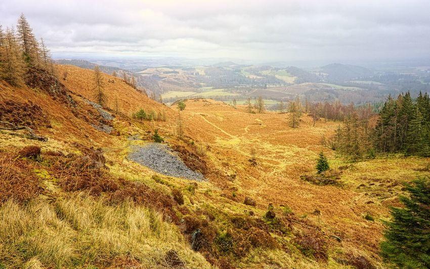 Former slate quarry on the Highland Boundary Fault, Birnam Hill Perthshire Scottish Highlands Scotland Nature_collection Highland Boundary Fault Geology Landscape