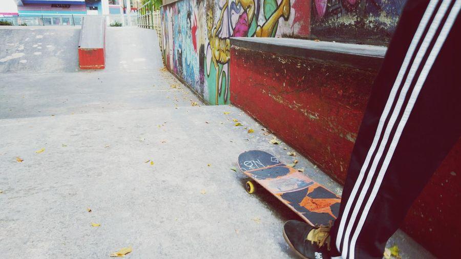 Skatelife Skatesalva Skateboarding