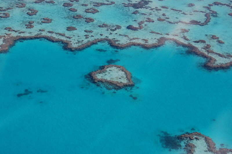 Heart-shaped reef. Great Barrier Reef. Queensland. Australia Water Sea Nature Underwater Aerial View No People Sea Life High Angle View Beauty In Nature Blue Turquoise Colored Land Scenics - Nature Day Reef Outdoors Idyllic Tranquility Animal Marine Pollution Great Barrier Reef Coral Reef Heart-shaped Reef Queensland Australia