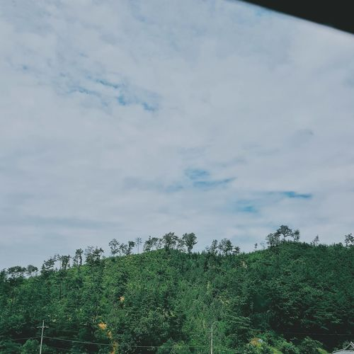 In Bus Window Window View Window Nature Green And Sky With Music Comfortable Nature Plant No People Day Sky Beauty In Nature