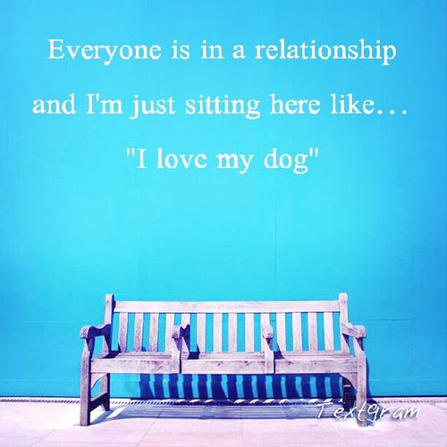 Quotes I Love My Dog No Love Lonliness