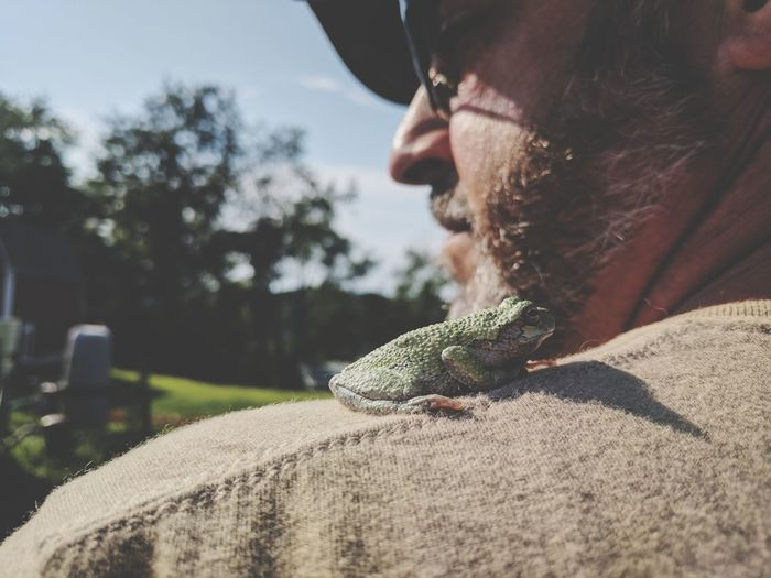 EyeEm Selects Beard Close-up Frogs,chilling Nature_collection Green Amphibian Frog Animal Photography People Nature Outdoors Shoulder Stand Shoulder Pet Portraits