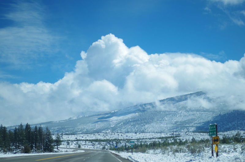 On the road to a winter Wonderland Weed California Snow Winter Cold Mountain Tree Snow Winter Cold Temperature Motion Adventure Power In Nature