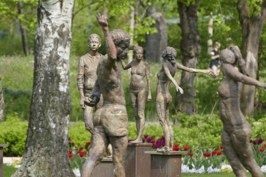 Art And Craft Craft Creativity Day Female Likeness Focus On Foreground Forest Human Representation Male Likeness Nature No People Outdoors Plant Representation Sculpture Statue Travel Destinations Tree Tree Trunk Trunk