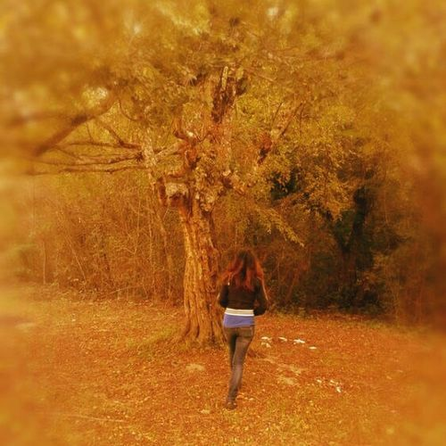 Ушла в осень Осень 🍁🍂 девушка