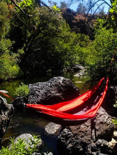 In the upper part of Upper Bidwell Park, went off the beaten path to find a place all to myself Relaxing Time Peace And Quiet Hammock Peaceful Place Hammock Time In The Wilderness Remote Location Away From The Hustle Hammock Life Outdoor Photography Creekside Chill Mode Chillin' Chilling Hammocktime Hammocklife Bidwell Park Upper Bidwell Park Chico, California Chico Off The Beaten Path Place To Rest Place To Relax Relax In Nature Relaxing In Nature