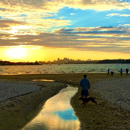 Sunset reflections at the beach Sunset Beach Real People Full Length Water Father Sky Nature Outdoors Rear View Beauty In Nature Son Leisure Activity Sand Sea Family Scenics Men Togetherness People Relection On Water Dog Walking Golden Hour Sunset #sun #clouds #skylovers #sky #nature #beautifulinnature #naturalbeauty #photography #landscape Beach Life