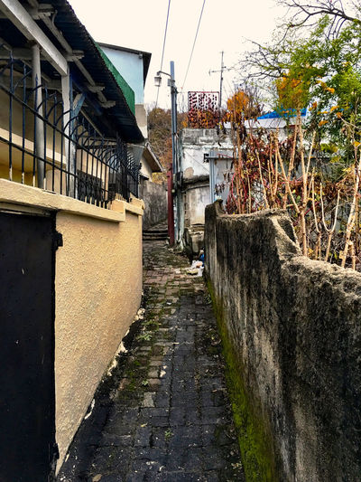 韓国 Koreatown Korea の 裏路地 シリーズ03。この裏路地では、果物や野菜を干している家が多かった。そう言えば、味噌壺と干し野菜は本当によく見かける。 テジョン Streetphotography EyeEm Korea Back-alley