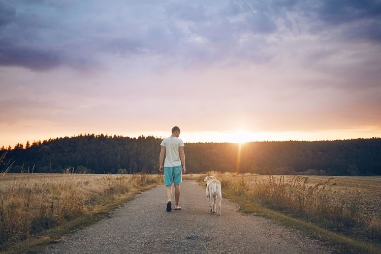 Rear view of man with dog walking on road during sunset