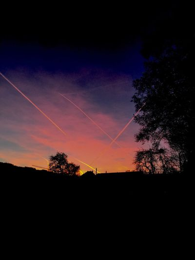 Nofilter Nature Beauty In Nature Sunset Landscape Sky Outdoors Contrail Tree
