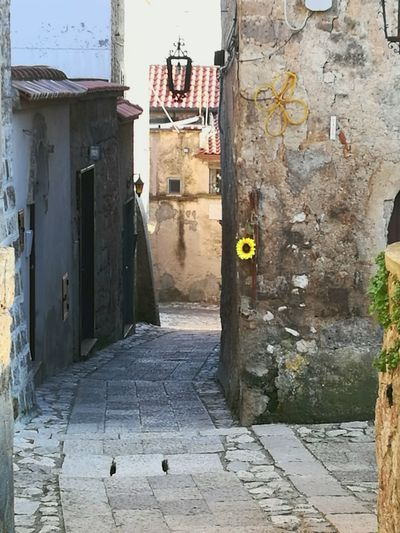EyeEmNewHere Built Structure Outdoors No People Flower Yellow Sunflower Italy Village Street Houses Architecture Prospective Passage Old Grandma Colour Your Horizn Stories From The City