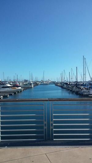 Boats Yacht Sunny Day Marina