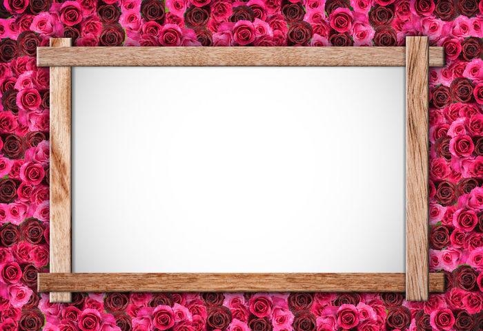 Group of Rose photo frame Love Pink Romance Romantic Rose Background Rose♥ Valentine Valentine's Day  Wedding Wood Flower Frame No People Photo Photo Frame Photo Frames Rose - Flower Rose Frame Roses Rosé Valentine Card Valentine's Day - Holiday Valentines Valentines Day Valentinesday