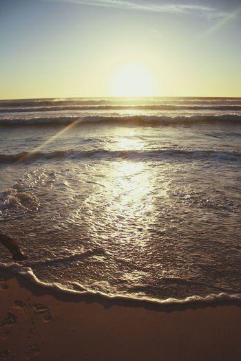 Sea Enjoying The Sunset Relaxing Sunshine