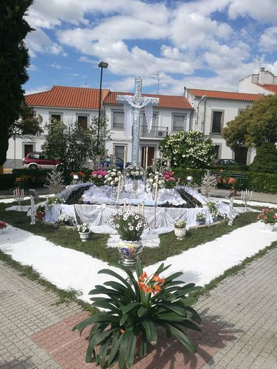 Villanueva De Córdoba Cruces De Mayo The Architect - 2018 EyeEm Awards Flower Tree House Sky Architecture Building Exterior Built Structure Plant Cloud - Sky Ornamental Garden