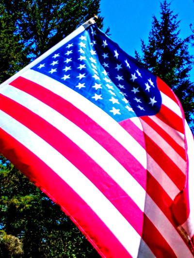 USA Eye Em